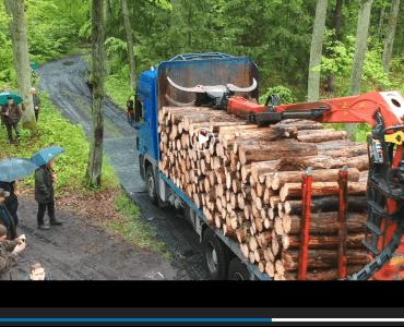 samochod-ciezarowy-jadacy-po-drodze-tymczasowej-w-lesie
